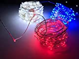Ultra Bright Red, White and Blue 33 ft. Fairy USB Powered LED Firefly String Lights Set. Waterproof. Indoor or Outdoor Lights for Christmas, Holidays and Party's.
