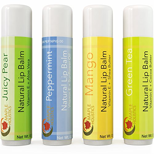 Natural Lip Balm For Women And Men - Flavored Lip Balm For Dry Lips - Therapeutic Lip Repair Treatment - Four Flavor Multipack With Aloe Vera Shea Butter And Antioxidant Rich Vitamin E