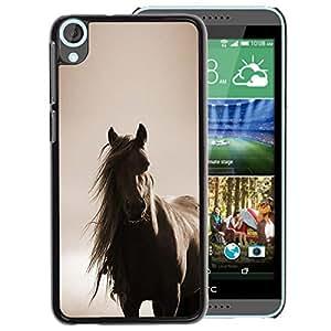 A-type Arte & diseño plástico duro Fundas Cover Cubre Hard Case Cover para HTC Desire 820 (Horse Mane Sepia Brown Animal Pet)