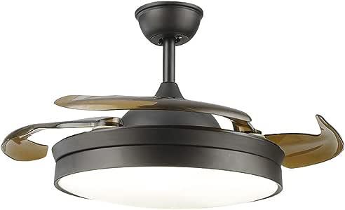 Etelux luz del ventilador de techo, Ventilador de Techo con luz, 106 cm de Diámetro, 65 W, 4 aspas Reversibles, 3 velocidades, 3 colores (Negro): Amazon.es: Hogar