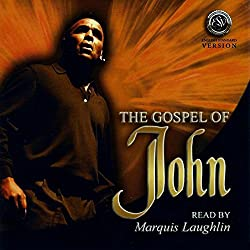 John's Gospel (English Standard Version)