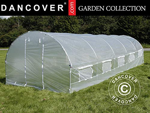Dancover Polytunnel Greenhouse 4x8x2 m, 32 m², Transparent