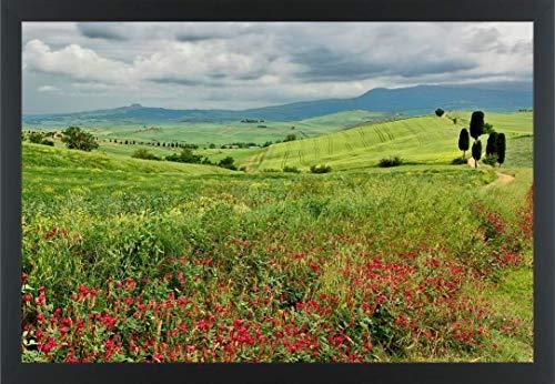 - Easy Art Prints Adam Jones's 'Agricultural Field' Premium Framed Canvas Art - 20