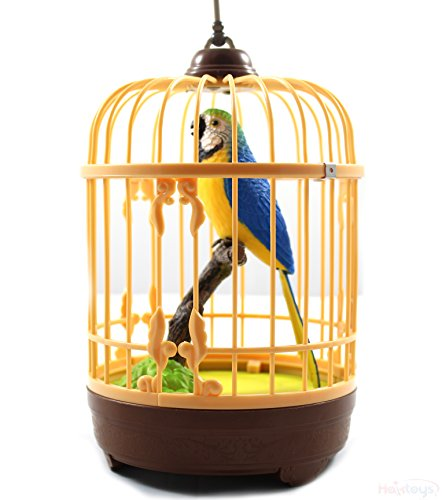 Haktoys Battery Operated Realistic Singing & Chirping Bird T