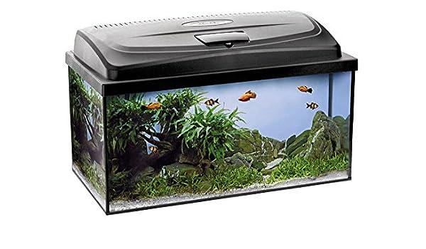 aquaszut Acuario aqua4fa Mily Juego completo Ochenta Cristal Acuario 112 L 80 x 35 x 40 cm: Amazon.es: Productos para mascotas