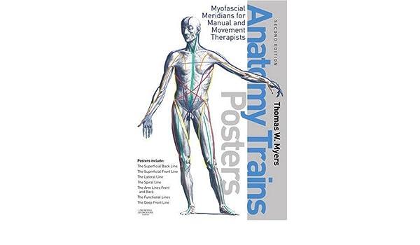 The Anatomy Trains Posters Thomas W Myers 9780443102936 Anatomy