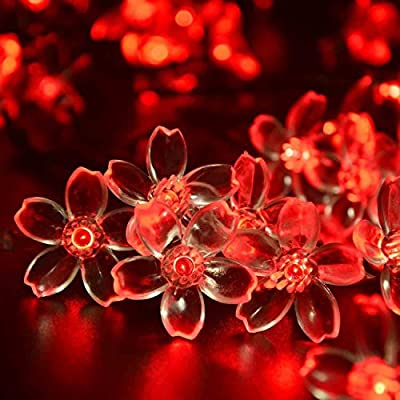 Qedertek Flower Solar Outdoor String Lights, 21ft 50 LED Fairy Blossom Christmas Lights Decorative Lighting for Indoor, Home, Garden, Patio, Lawn, Party and Holiday Decoration (Red)