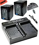 BM Premium 2-Pack of VW-VBT380 Batteries and Dual Battery Charger for Panasonic HCV380, HCV510, HCV520, HCV550, HC-V710, HC-V720, HC-V750, HC-V770, HC-VX870, HC-VX981, HC-W580, HC-W850, HC-WXF991