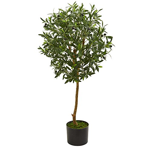 Nearly Natural 5565 3.5' Olive Tree Artificial Plant, Green (Of Furniture Out Tree Made Trunks)