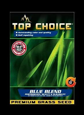 Top Choice 17643 Kentucky Blue/Perennial Ryegrass Grass Seed Mixture, 10-Pound