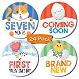 Baby Boy 24 Pack Milestone Stickers | Includes 12 Monthly Stickers and 12 First Holiday Stickers by Kinokyo