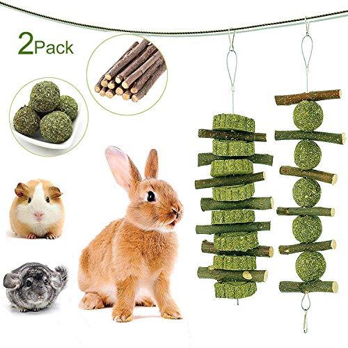 Petawi Bunny Toys Supplies Rabbit Chinchilla Treats and Chews Toys for Teeth Natural Organic Apple Wood Chew Sticks Pet…
