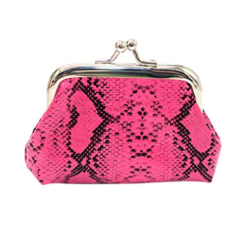 IAMUP Women's Snake Coin Purse Casual Square Clutch Wild Fashion Wallet Purse Card Holders