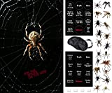 Fun Halloween Party Game - Pin The Spider On The Web - 2 Halloween Games In 1 - A Family Friendly Version or a Drinking Game Version