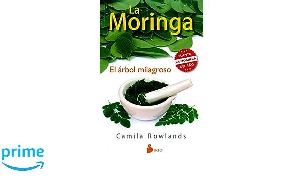 Moringa, La (Spanish Edition) (Spanish) Paperback – January 31, 2017