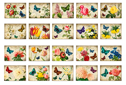 VICTORIAN FLOWERS postcard set of 20 postcards. Artistic flower in a vintage style post card variety pack. Made in USA.