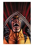 X-Men Origins: Wolverine No.1 Cover: Wolverine ists Art Poster Print by Mark Texeira, 18x24