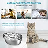 WOPET Cat Water Fountain Stainless Steel,Pet