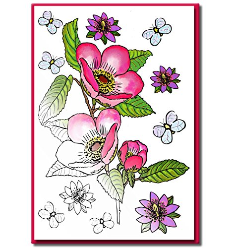 Adult Note - Adult Coloring Greeting Cards for Birthday, Anniversary and Every Occasions | Set of 10 Cards to Color and Send | Envelopes Included | Art Eclect Set B/Pink