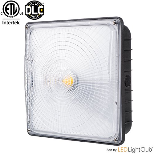 """Parmida LED Canopy Light, 45W, 0-10V Dimmable, 5200lm, 110-277VAC, IP65 WATERPROOF, DLC-Qualified & ETL-Listed, 5000K (Day Light), 9.6"""" x 9.6"""", Gas Station, Street, Area & Outdoor Lighting, Commercial"""