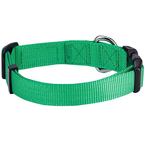 Image of Blueberry Pet 32 Colors Classic Dog Collar, Emerald, Small, Neck 12