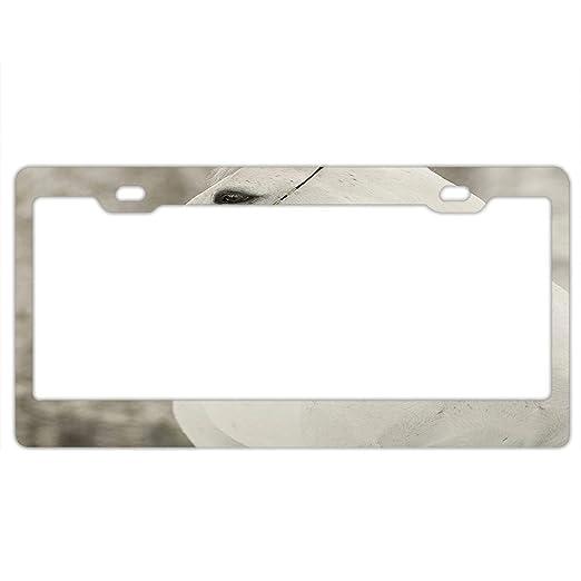 Life is good license plate frame holder