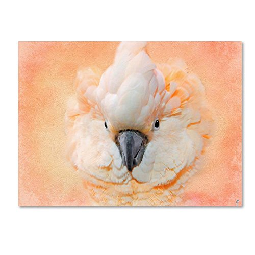 Salmon Crested Cockatoo Portrait 2 by Jai Johnson, 24x32-Inch Canvas Wall -