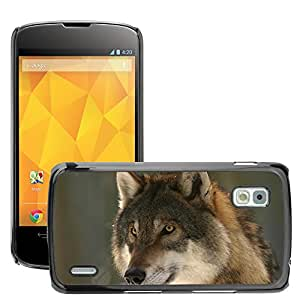 Super Stella Slim PC Hard Case Cover Skin Armor Shell Protection // M00145663 Wolf Zoo Canis Lupus Canine Mammal // LG Nexus 4 E960