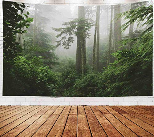 Bisead Wall Art for Bedroom Tapestry, Map Art Tapestry 80x60 inchs Misty Magic Vancouver Island Canada Wall Hanging Gifts for Bedroom Dorm Décor]()