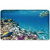 Memory Foam Bath Mat,Ocean,Clear Underwater Sea Life Animal World Corals Tropical Fishes and StingrayPlush Wanderlust Bathroom Decor Mat Rug Carpet with Anti-Slip Backing,Aqua Purple and Tan