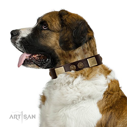 21 inch FDT Artisan Brown Leather Dog Collar with Plates and Ornate Studs - Exclusive Handcrafted Item - 1 1/2 inch (40 cm) wide - Gift Box Included