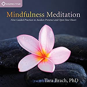 Mindfulness Meditation Speech