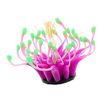 Sharplace Flor Terrario de Reptil Ornamento Coralino Silicio Accesorios Acuario Decoración - Morado: Amazon.es: Hogar