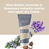 DRMTLGY Hand Cream Shea Butter Lotion for Dry Hands with Lavender & Rosemary. Non-Greasy Hand