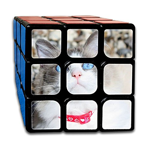 AVABAODAN Blue Eyes Cat Rubik's Cube 3D Printed 3x3x3 Magic Square Puzzles Game Portable Toys-Anti Stress For Anti-anxiety Adults Kids by AVABAODAN