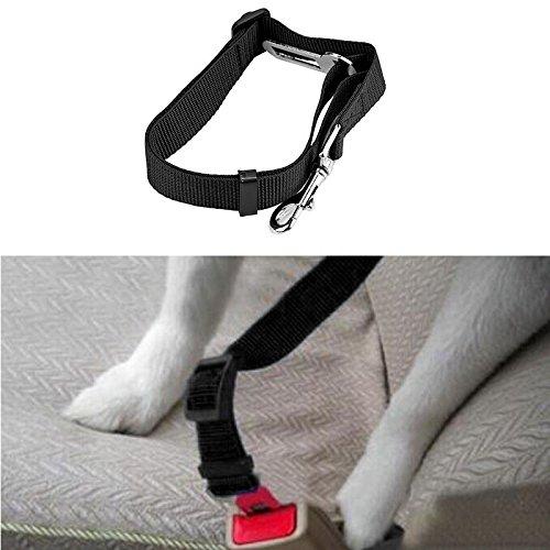 Cone Razor Stand - LtrottedJ Vehicle Car Seat Belt ,Seatbelt Lead Clip Pet Cat Dog Safety BK