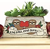 Sloth Lovers Succulent Planter, Love Fast Live Slow, Cute Garden Gift