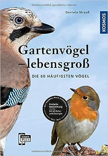 2e0cb65707d Gartenvögel lebensgroß: Die 60 häufigsten Vögel, Einfache Bestimmung, Mit  60 Rufen und Gesängen: Amazon.de: Daniela Strauß: Bücher