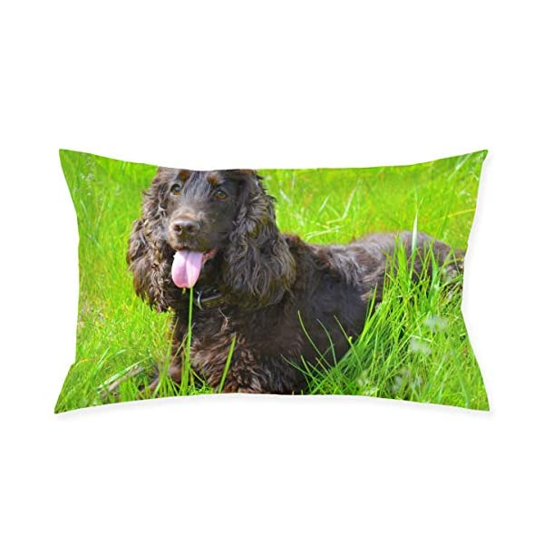 Pillowcase Irish Water Spaniel Zippered Pillow Cases - Pillow Protector Cover Case - 20x30 Inches 1