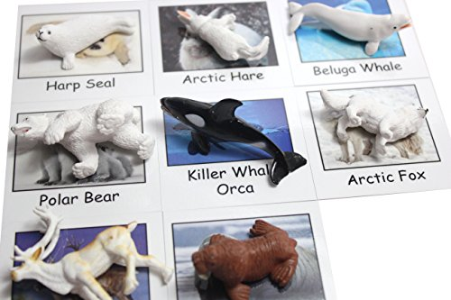 Montessori Arctic Polar Animal Match - Miniature Arctic Animal Toy Figurines with Matching Cards - 2 Part Cards. Montessori learning toy, language materials Busy Bag Activity