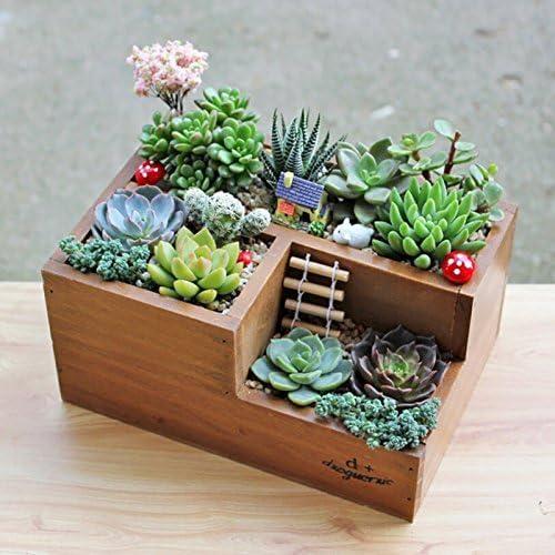Popolare Fioriera da giardino in legno: vaso per piante grasse, aiuola a XH03