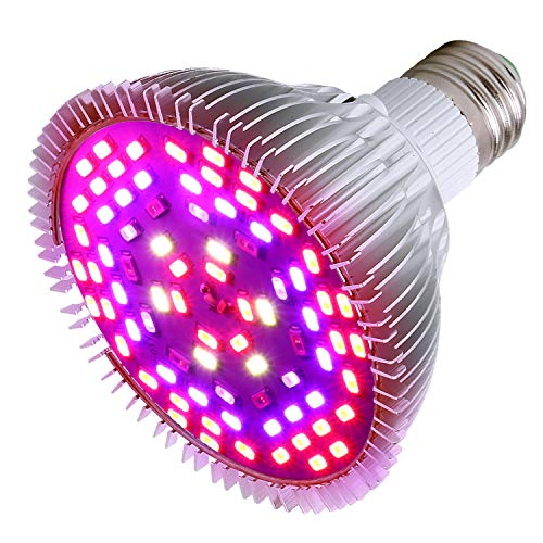Led Plant Lights For Indoor Gardens in US - 2