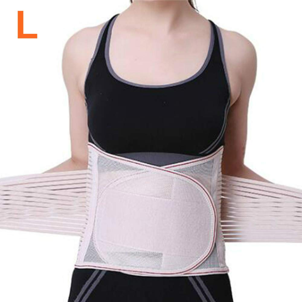 Enshey Adjustable Double Pull Lumbar Brace/Lower Back Belt, Pain Relief, Breathable Material - Wide Back Suppor with 5 Support Plates Hip & Waist Supports (L)