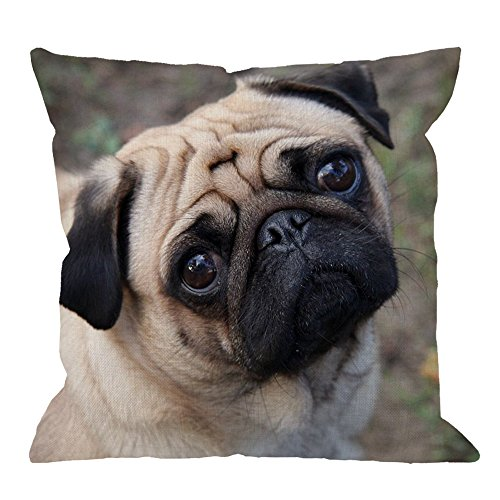 Black Pug Pillow (HGOD DESIGNS Pug Dog Pillow Case, Funny Pug Dog Look At You Cotton Linen Cushion Cover Square Standard Home Decorative Throw Pillow for Men/Women/Kids 18x18 inch Brown Black)