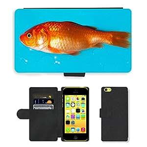CARD POCKET BOOK CASE PU LEATHER CASE // M00104030 Goldfish peces de agua dulce Karpfenfisch // Apple iPhone 5C
