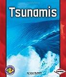 Tsunamis, Lisa Bullard, 0822588293