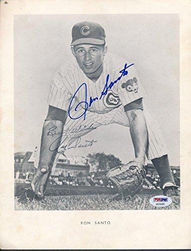 Ron Santo Autographed Photo - 8 5x11 AB76450 - PSA/DNA Certified - Autographed MLB Photos