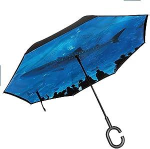 Rain Protection Shark,Aquarium Park and People Windproof Folding