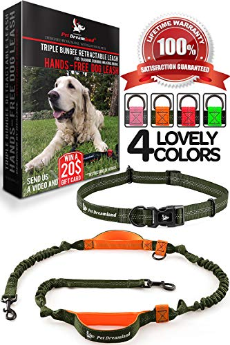 Hands Free Leash for Walking - One/Two Medium to Large Dogs (up to 150lbs) - Shock Absorbing Bungee Dog Leashes - Reflective Waist Dog Running Leash - Dog Harness for Running (One Dog, Khaki & Orange)