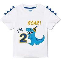AMZTM Dinosaurio Camiseta de Cumpleaños - 2do Cumpleaños Suministros Fiesta